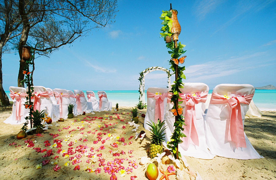 6 for Mexico wedding packages