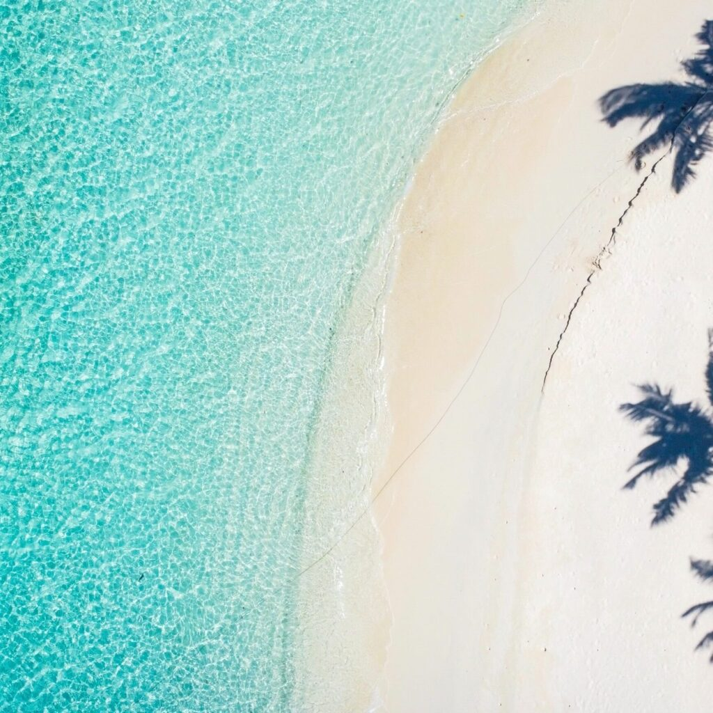 Ariel picture of beach